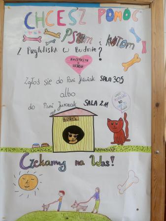 Szkolne Koło Wolontariatu – Akcja dla Przytuliska w Budnie